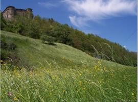 Compiano Castle, emilianischen Apennin