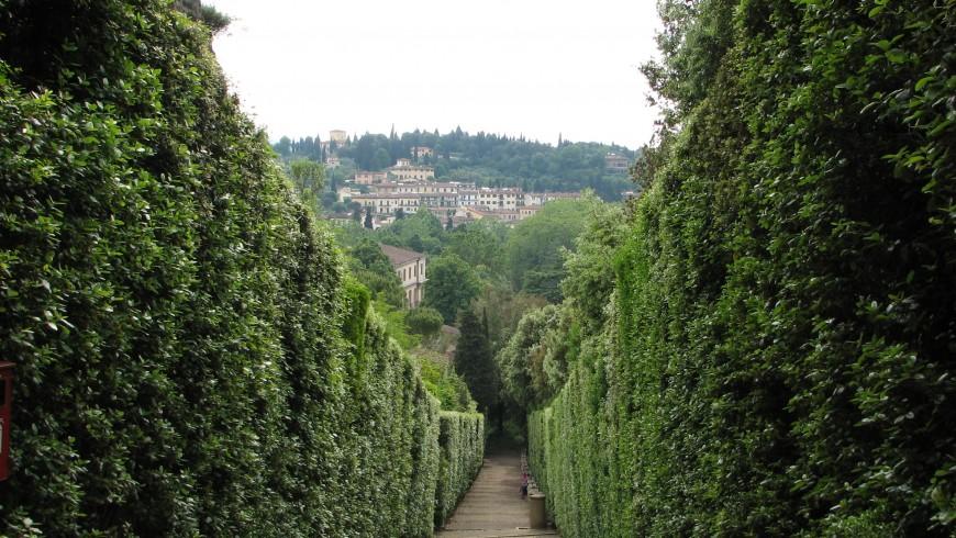 Labyrinth des Garten von Boboli in Florenz