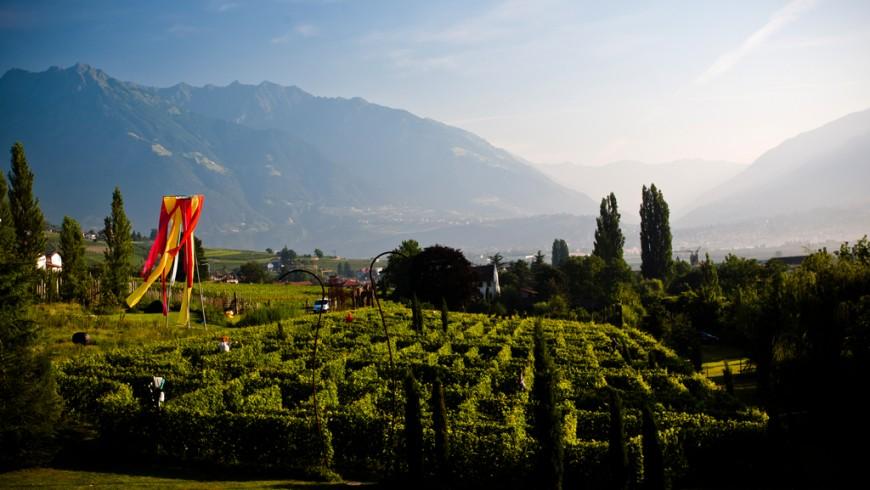 Weingarten Labyrinth von Merano