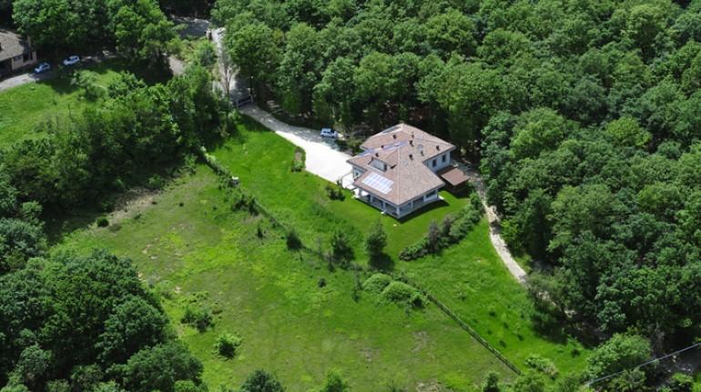 Ein ganzer Wald mitten in der Stille des Parks an den Toren von Parma