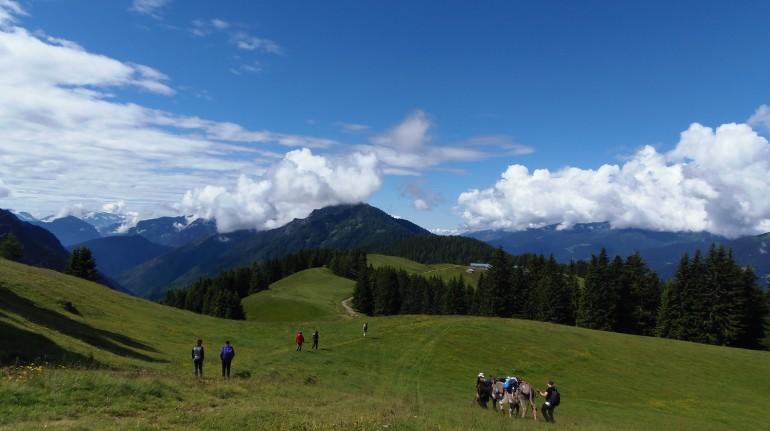 Eine ökologische Schutzhütte um das Leben in den Wäldern, im Trentino zu entdecken.