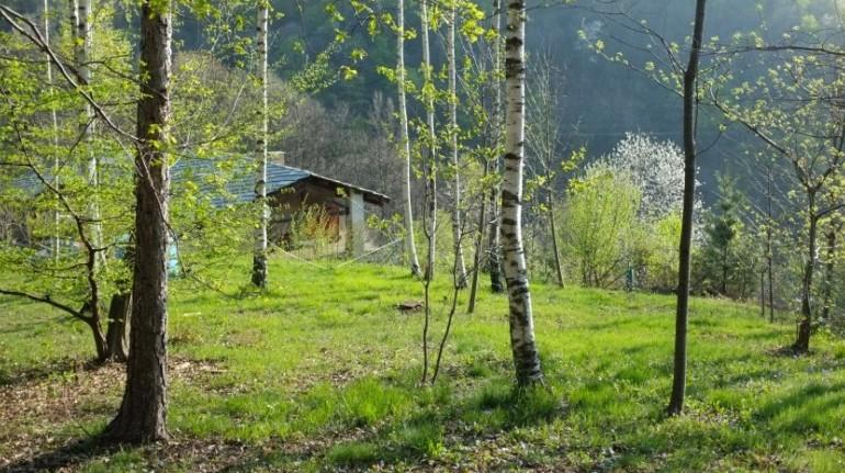 Casa Payer, ein umweltfreundliches Haus im Wald, im Piemont
