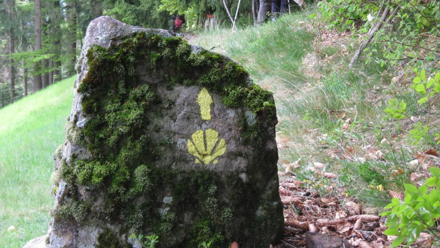 l-Cammino-Jacopeo-d'Anaunia 11