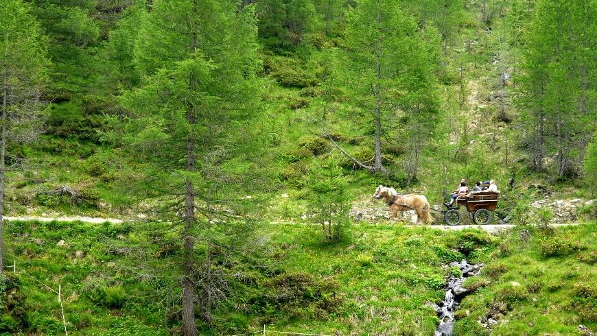 Val-Passiria-in-Carrozza1