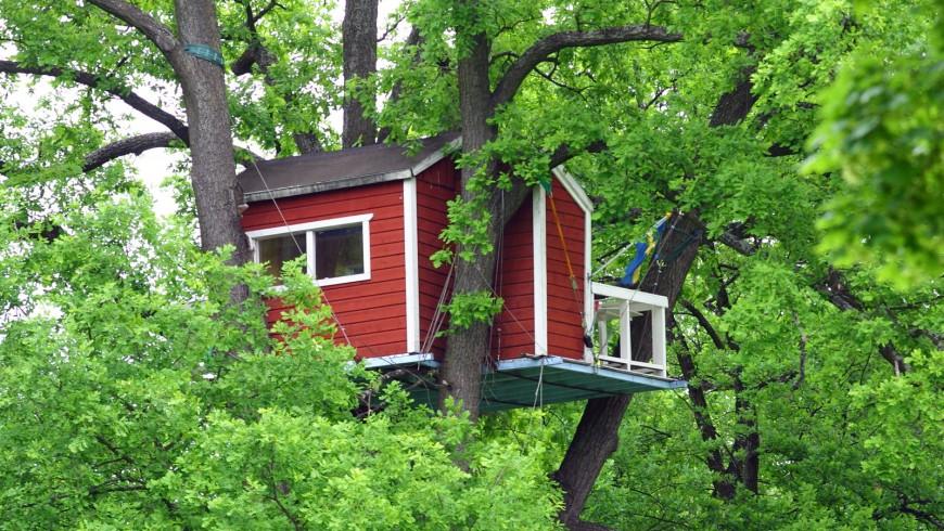 Auf einem Baumhaus schlafen