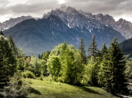 Grünes und umweltfreundliches Reisen nach Slowenien