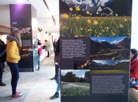 Ausstellung über Landschaft und Biodiversität im Bleds Informationszentrums