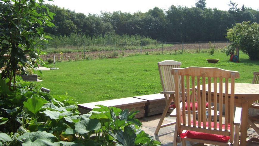 Wiese und Terrasse im Biohaus
