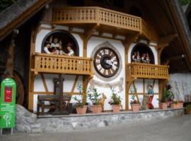 Ecobnb Schwarzwald