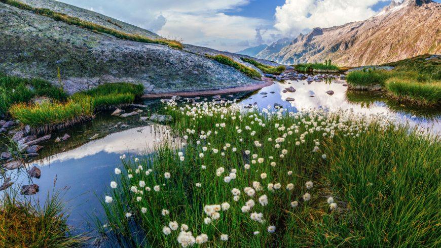 umweltfreundliche anreise, Grimsel Pass, Obergoms, Switzerland