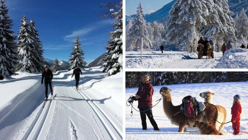 sanfte Beweglichkeit im Schnee
